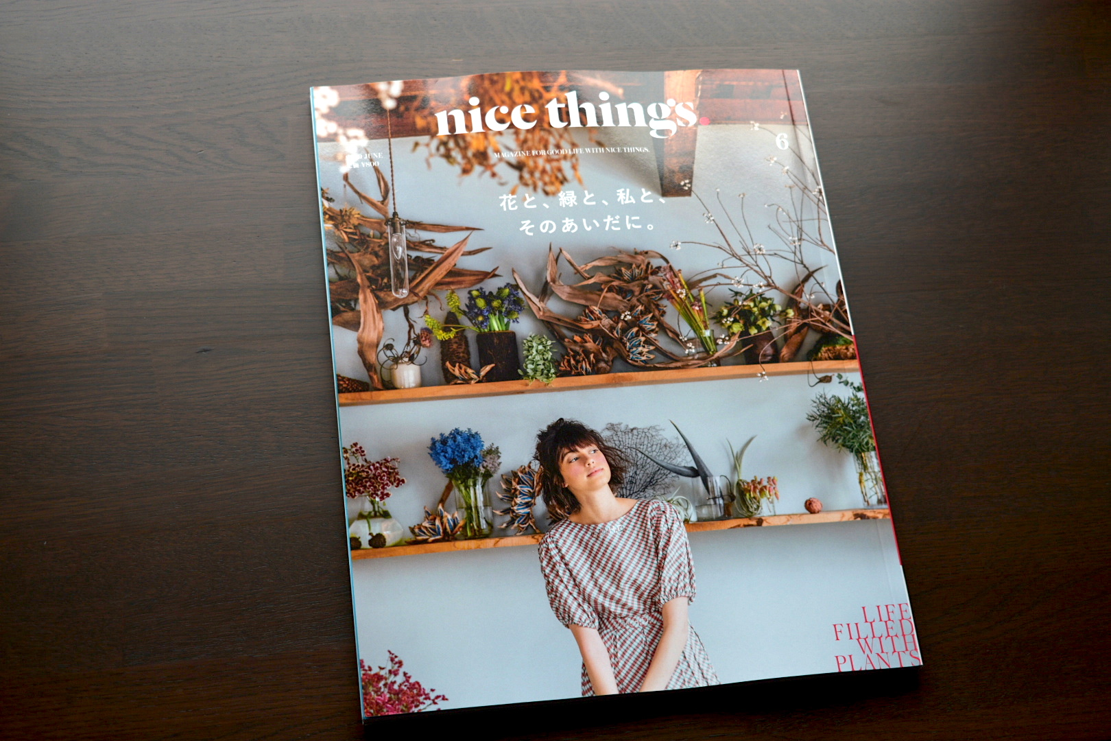 nicethings.201906号1